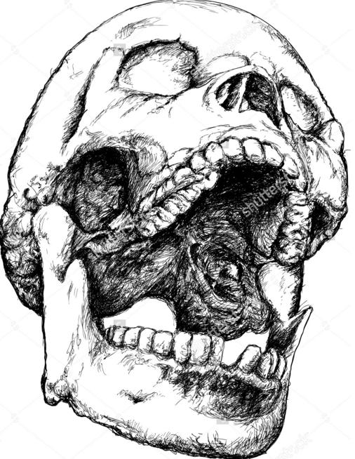 Ron Riekki Maps For Teeth